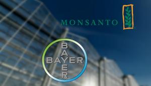 bayer_monsanto-1024x583