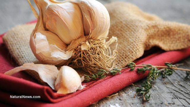 Close-Up-Garlic-Herbs