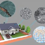 DARPA wants to build homes out of living biological materials