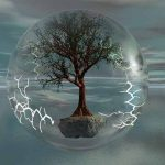 Electromagnetic Dominance and Deforestation