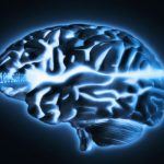 Your Brain does not Process Information and is not a Computer