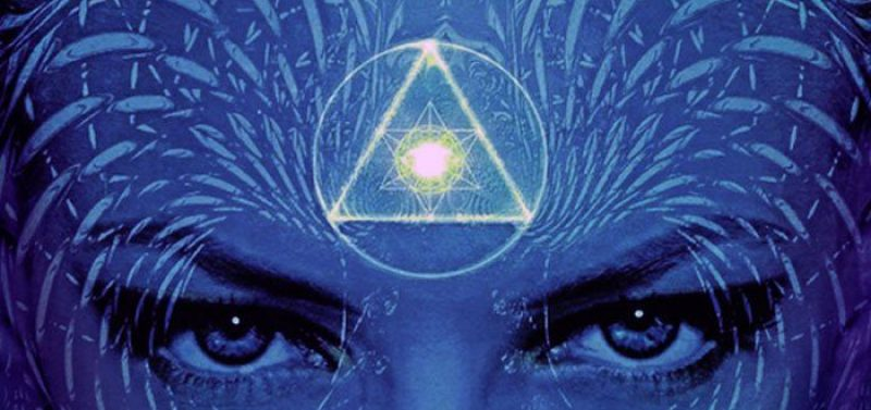 THE EFFECT OF FLUORIDE ON THE PHYSIOLOGY OF THE PINEAL GLAND