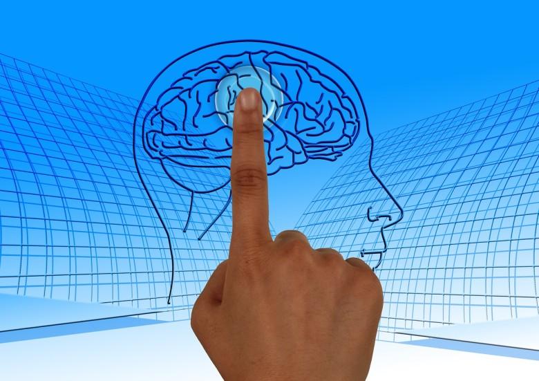 brain-770044_1280-e1433302121360