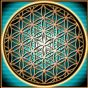 Does the secret to how the universe works lie within this geometrical pattern? The Flower of Life