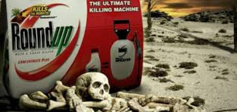 Thousands of people now have non-Hodgkin's Lymphoma due to glyphosate (Roundup) exposure