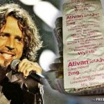 Chris Cornell's Wife Just Blamed His Death on an FDA-Approved Psychoactive Drug