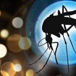 Controversial Article On West Nile Virus ABC NEWS, August 29, 2001