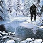 Sasquatch That Can't Be Killed with Bullets and Disappear in A Flash of Light