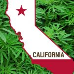 California brings in New Year by becoming largest state to legalise recreational marijuana