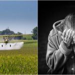 Researchers Discover Why Pesticide Exposure Increases Risk Of Parkinson's