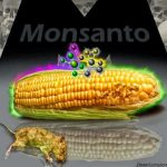 Monsanto loses lawsuit and $289 million