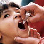 Will The Poliovirus Eradication Program  Rid the World of Childhood Paralysis?