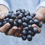Anticancer Effects of Grape Seed Extract on Human Cancers: A Review