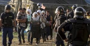 refugees-fence