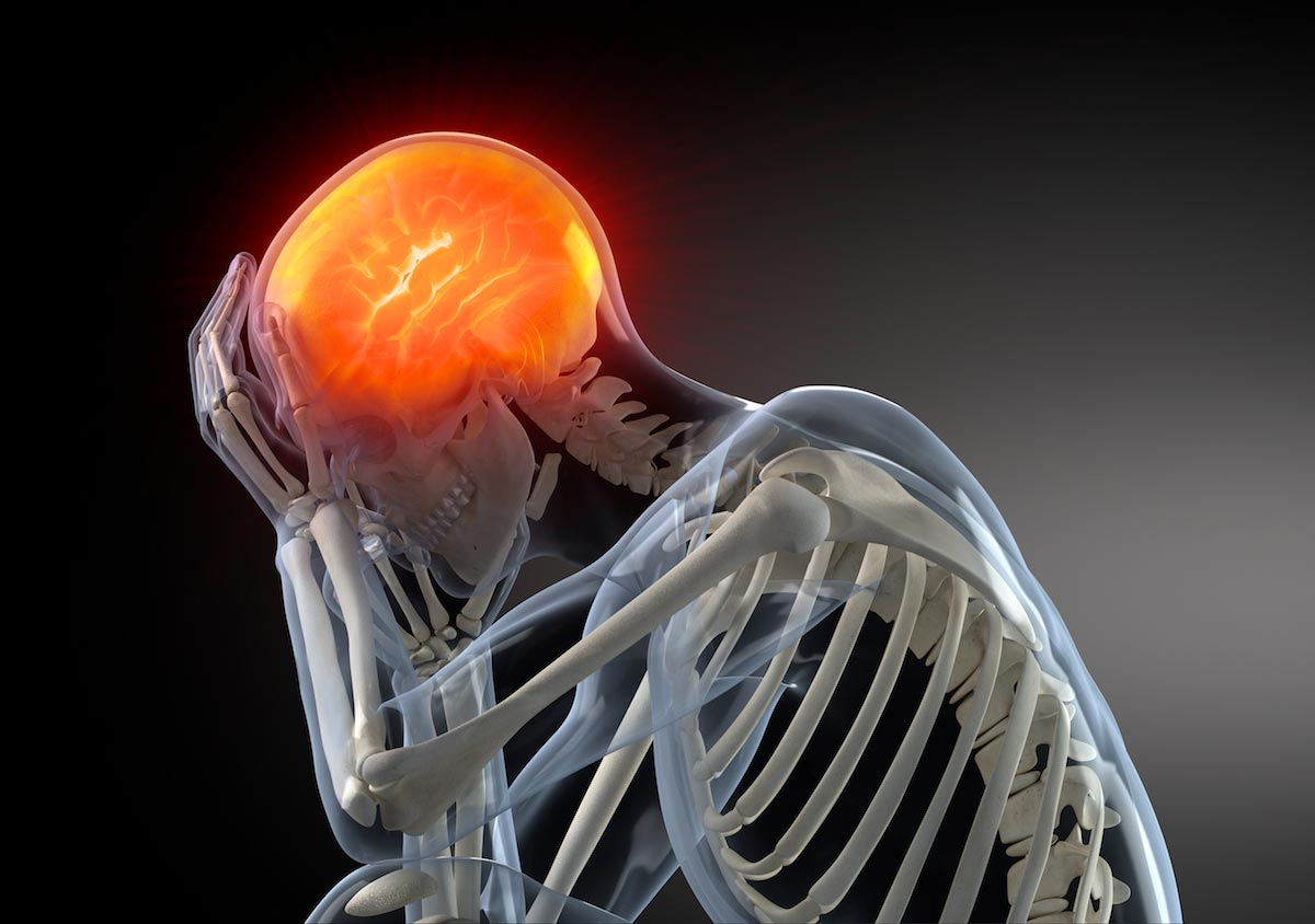 3d-Model-Human-Brain-Skeleton-Pain