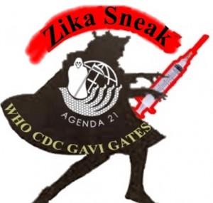 Zika-Sneak-Large