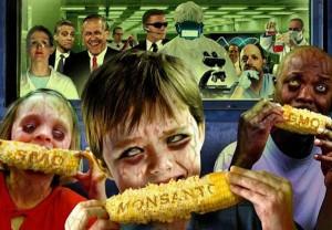 Monsanto-GMO-corn-Dees-illustration