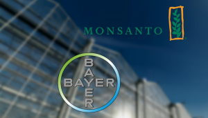 bayer_monsanto-1024x583