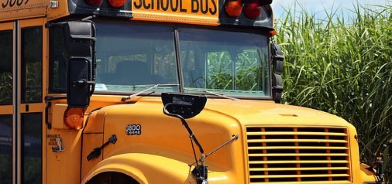 Public Schools Are Brainwashing Factories For Children