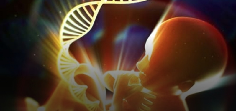 LEADING SCIENTISTS: Yes, Vaccines DO contain aborted fetal DNA
