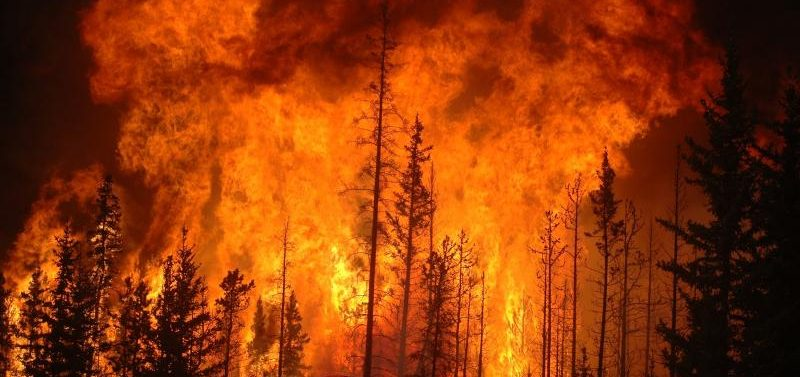 Are the Australian fires disaster capitalism at work or something much worse?