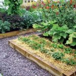 Garden Microclimates: Shrug Off Your Growing Zone