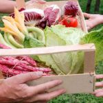 Prepping tips: store fresh fruits and vegetables for months without refrigeration