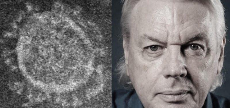 """MUST WATCH & SHARE"" David Icke Tells The Whole Truth on the Coronavirus"