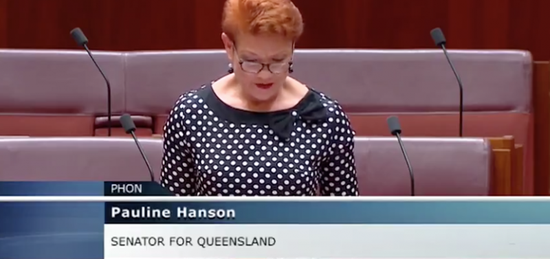 AUSTRALIA: PAULINE HANSON 'STOP THE DEMONIZATION OF MEN & REFORM THE FAMILY LAW ACT 1975'